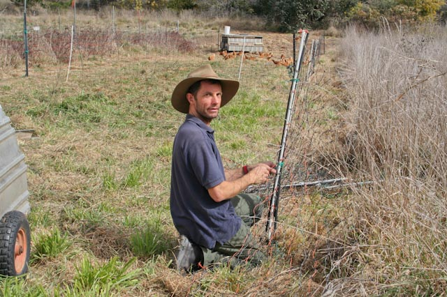 Stephen moving an electric net fence